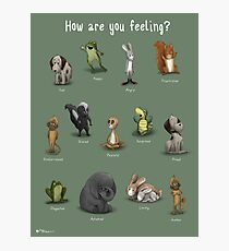 How Are You Feeling? Photographic Print