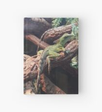 Water Dragons Hardcover Journal