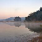 Misty Morning by Joel McDonald