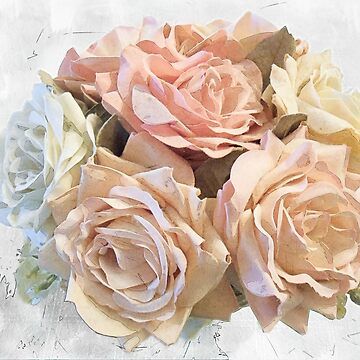 Spring Roses by gharkness