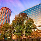 Autumn Colors - Millennium Hotel and St. Louis Buildings by Gregory Ballos