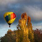 Autumn Flight by Annette Blattman