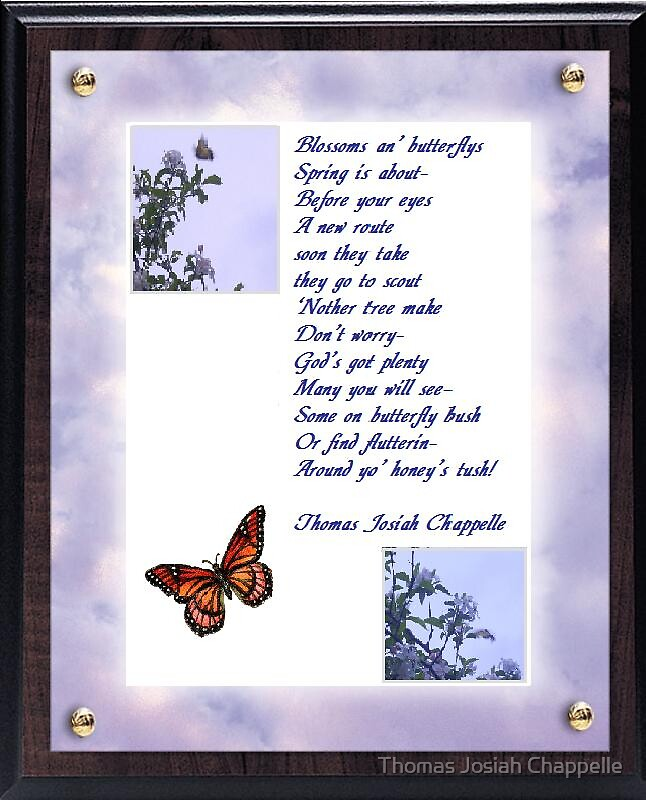 Butterfliez and Blossomz by Thomas Josiah Chappelle