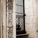 iron gate by Lenore Locken
