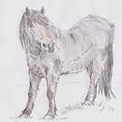 Exmoor Pony Drawing by MikeJory