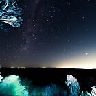 the view from Mt Dale at night by BigAndRed