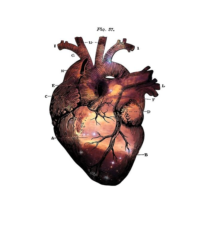 Galaxy Vintage Heart Anatomy\