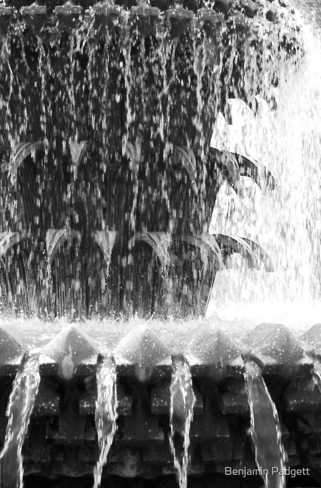Pineapple Fountain - Charleston, SC by Benjamin Padgett