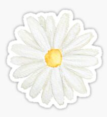 one little white  daisy watercolor  Sticker