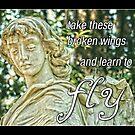 learn to fly by Lenore Locken