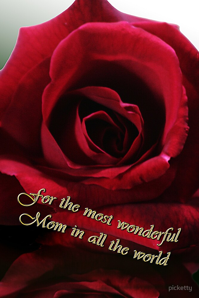 red rose for mother's day by picketty
