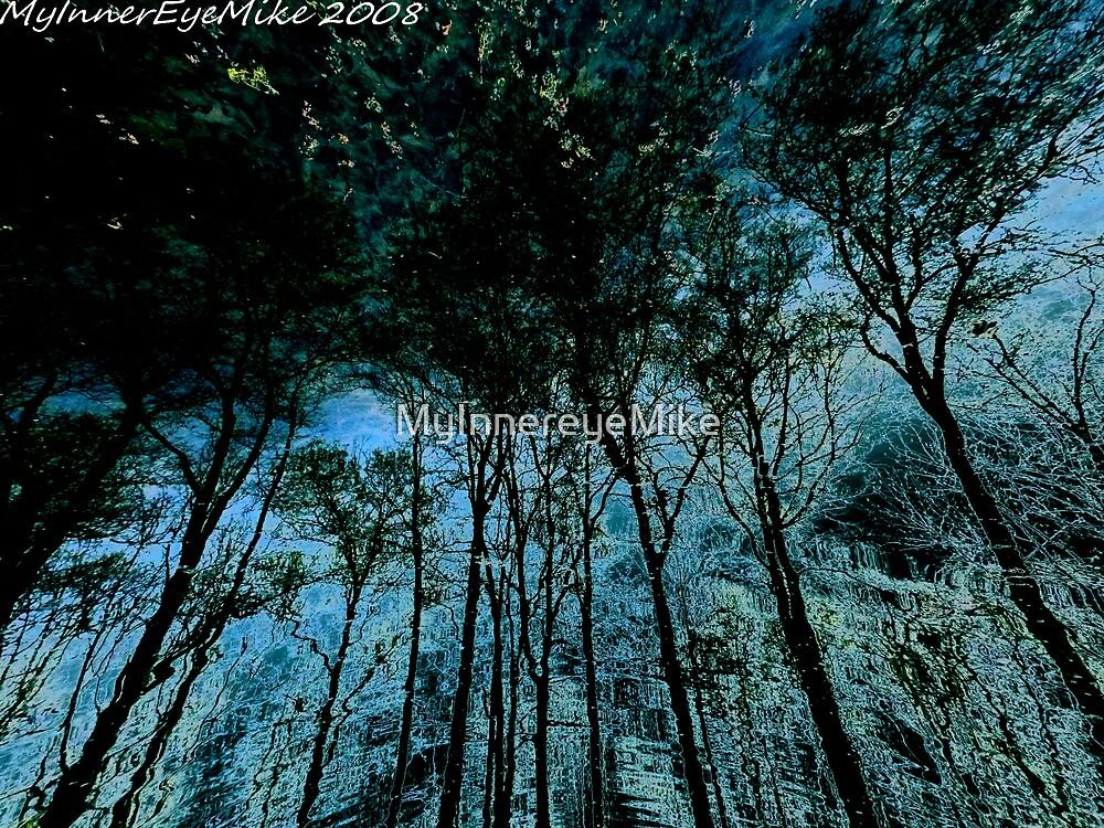 #309          Liquid Sky by MyInnereyeMike