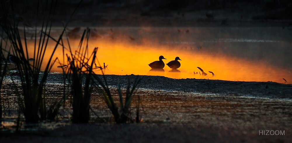 Ducksacpe by HIZOOM