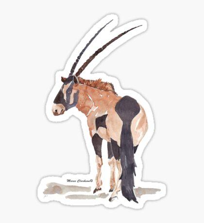 Gemsbuck (Oryx gazella) Sticker