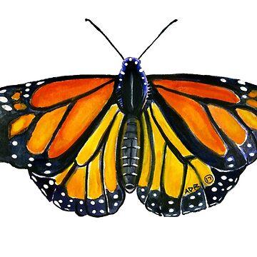Monarch Butterfly by SurlyAmy