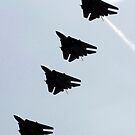 Vier F-14D Tomcats im Flug. von StocktrekImages