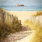 Vintage Beach Postcard by Joshua McDonough Photography
