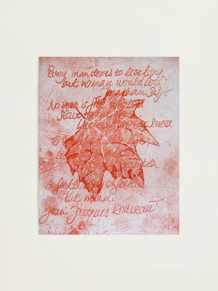Alternate view of Leafy Wisdom (I) Photographic Print