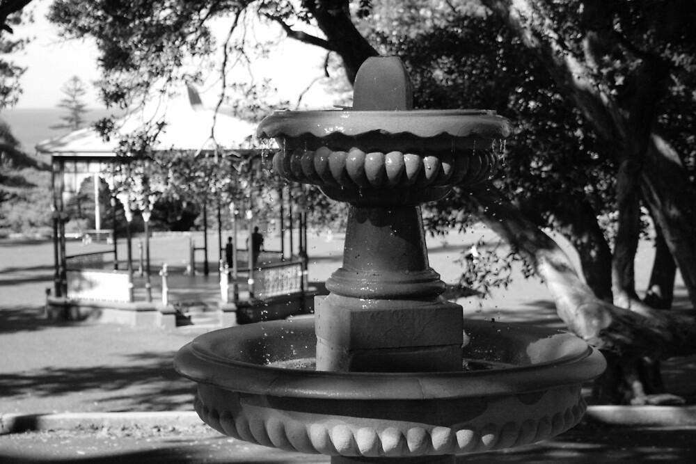 King Edward Park, Newcastle by Norma Blackburn