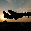 Ein F-14D Tomcat macht eine festgestellte Landung, als die Sonne untergeht. von StocktrekImages