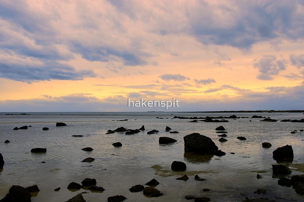 Williamstown Beach by hakenspit