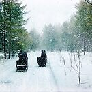 Sleigh ride by © Kira Bodensted