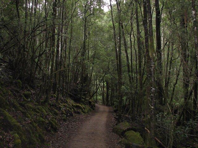Long and Winding Road by Dejajn