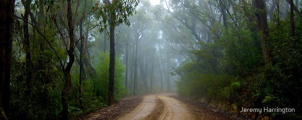 Tableland Mist by Jeremy Harrington