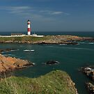 Buchan Ness Lighthouse and the North Sea by Maria Gaellman
