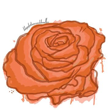 An [Orange] Rose By Any Other Name - Watercolour by EloisaRelish