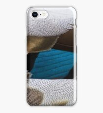 Duck feathers iPhone Case/Skin