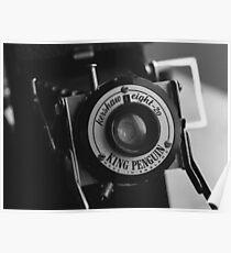 King Penguin Folding Camera Poster