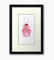 Sarcastic Beetle Framed Print