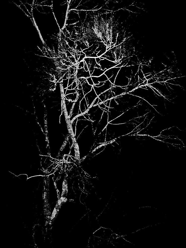 gnarled by deecomposing666