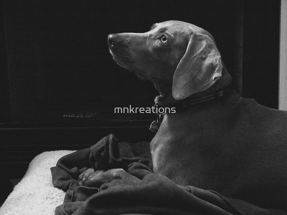 Maisie Daisie by mnkreations