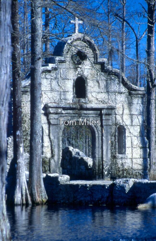 Black Swamp Mission by Tom Miles