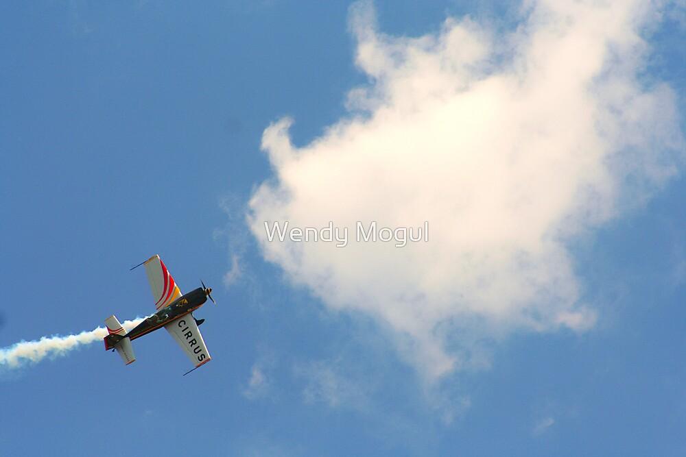 Aerobatic Champion  by Wendy Mogul