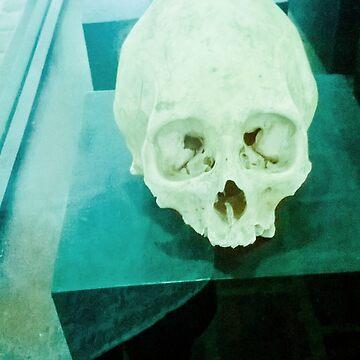 Skull historical Colombian. by ALEJANDRASWEET