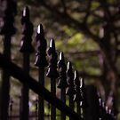 Spike fence at night by jclegge