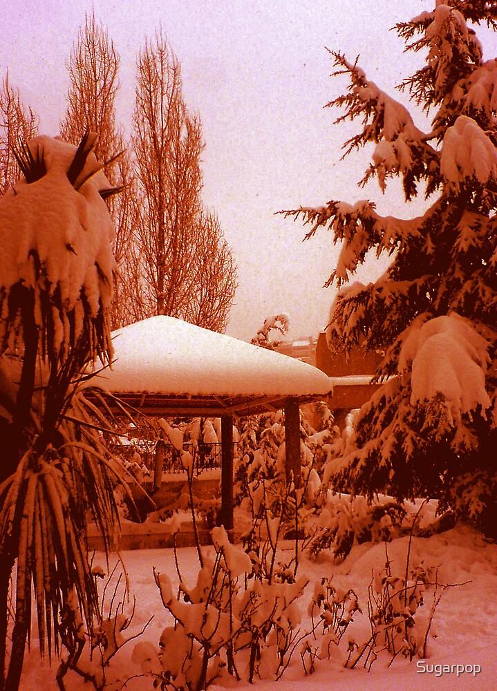 winter end by Sugarpop