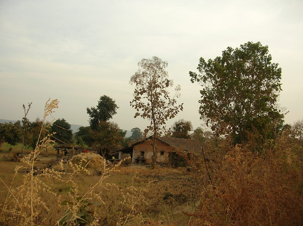 The cottage in the jungle by nisheedhi