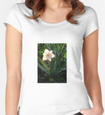 Backlit Daffodil Women's Fitted Scoop T-Shirt