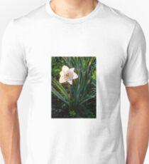 Backlit Daffodil Unisex T-Shirt
