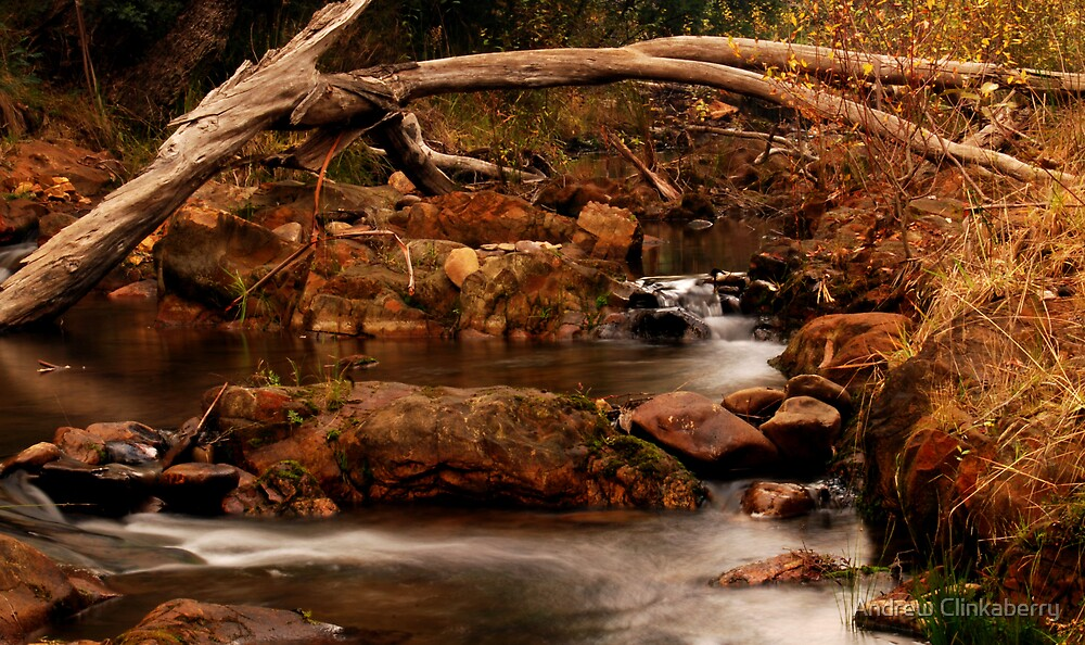 Morse Creek......again by Andrew Clinkaberry