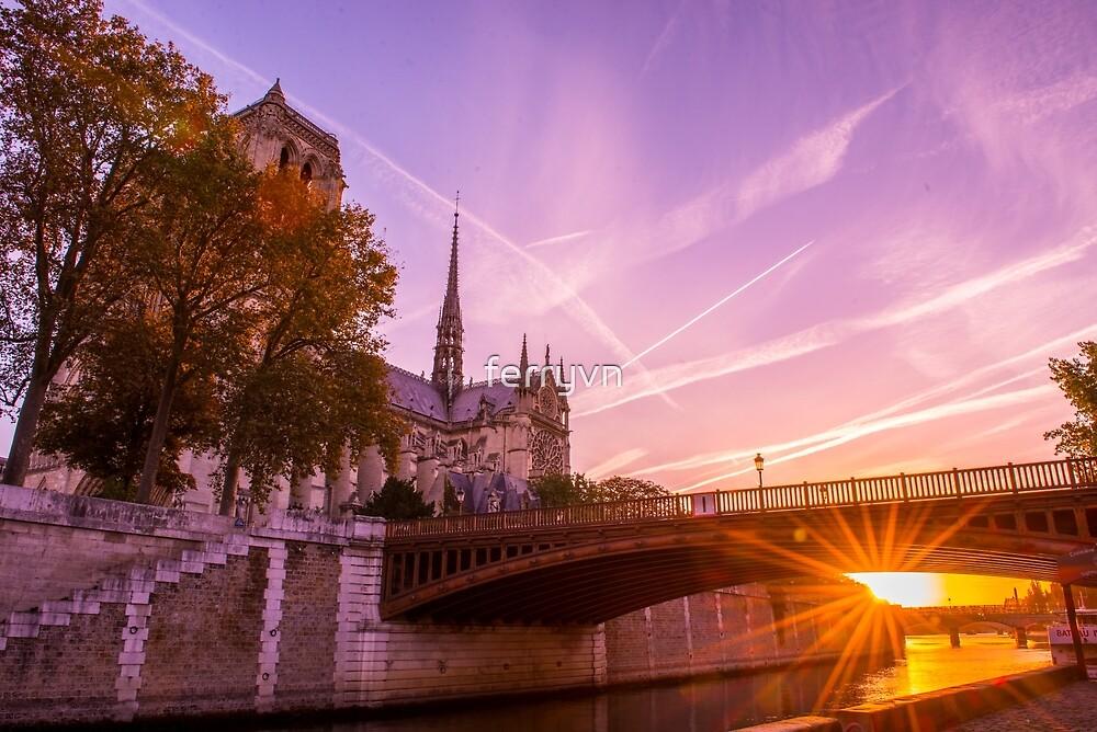 Sun Rise over Paris Notre Dame by ferryvn
