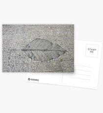 Sidewalk Art by Leaf Postcards