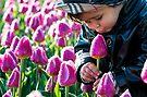 Tulip Adoration by ferryvn
