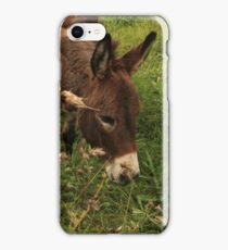 Hot Wheezing Donkey iPhone Case/Skin
