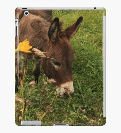 Hot Wheezing Donkey iPad Case/Skin
