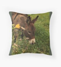Hot Wheezing Donkey Throw Pillow